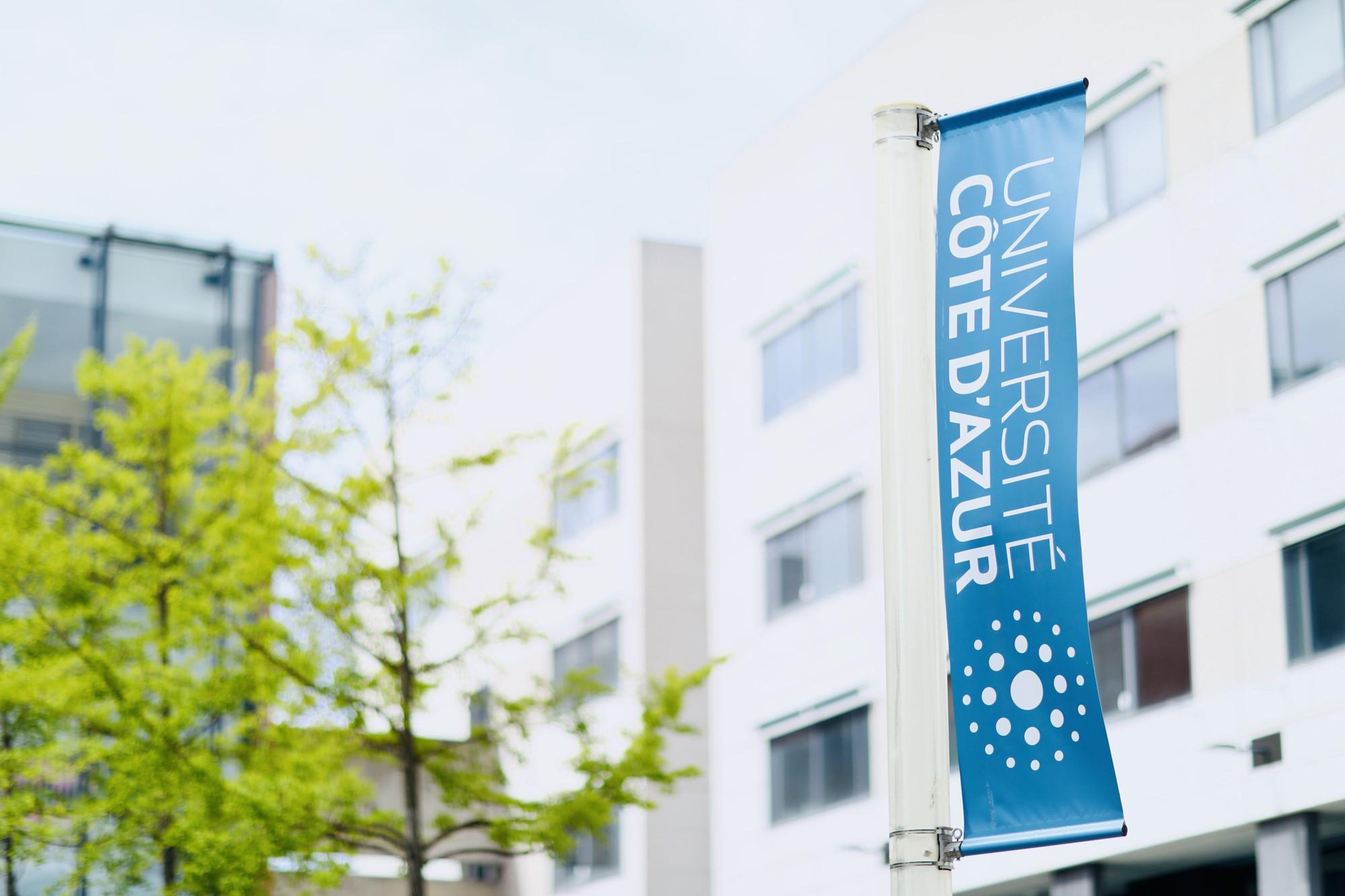 Université Côte d'Azur SJA